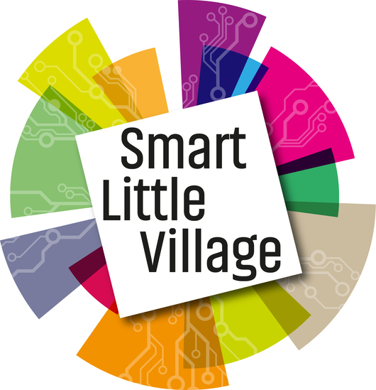Smart Little Village